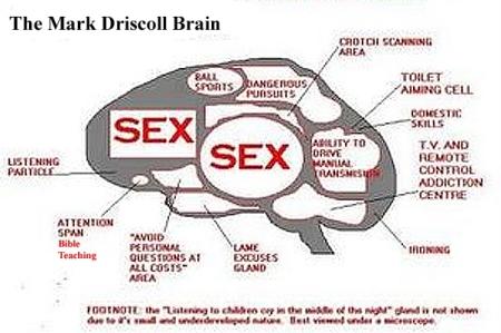 markd-brain